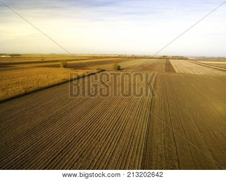 Agricultural Fields In Autumn