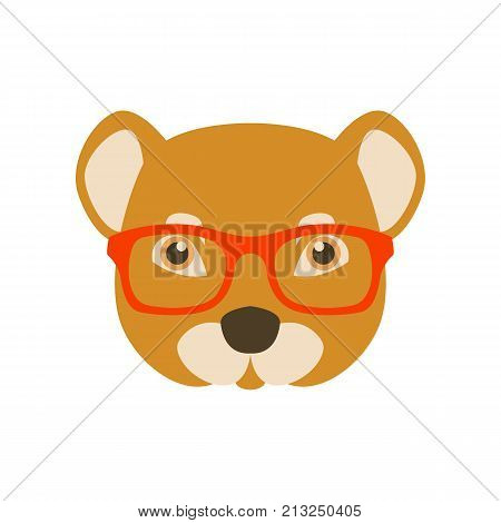 mongoose in glasses vector illustration flat style front side