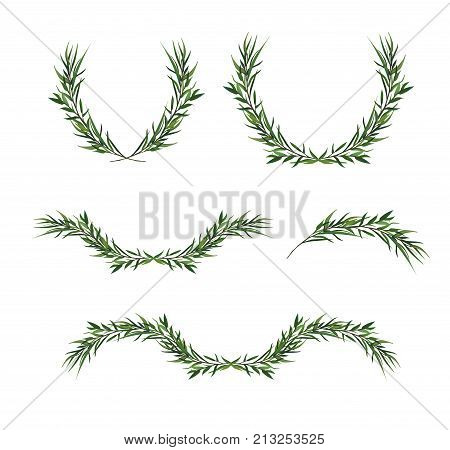 Vector decorative element set. Eucalyptus round Green leaf Wreath greenery branches winter garland border frame elegant watercolor isolated editable illustration. Christmas greeting card objects