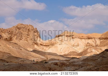 One unidentified tourist on hiking trail approaching to mountain pass in Negev desert Israel.