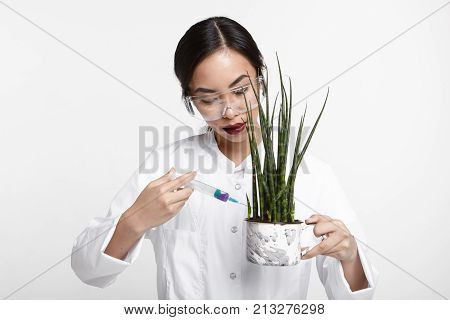 Attractive young Asian female scientist in protective eyewear and white coat genetically modifying plant with syringe. Pretty woman biologist giving injection of nutrients and vitamins into flower