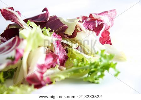 Red fresh salad radicchio and green lettuce mix teared isolated on white background, selective focus and and controlled blur . Healthy vegetarian food .