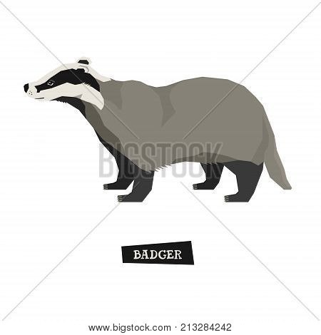 Wild animals collection Badger Geometric style set