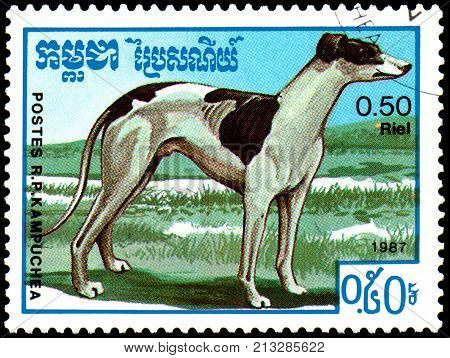 KAMPUCHEA - CIRCA 1987: a postage stamp, printed in Kampuchea, shows a Greyhound dog, series breeds dogs