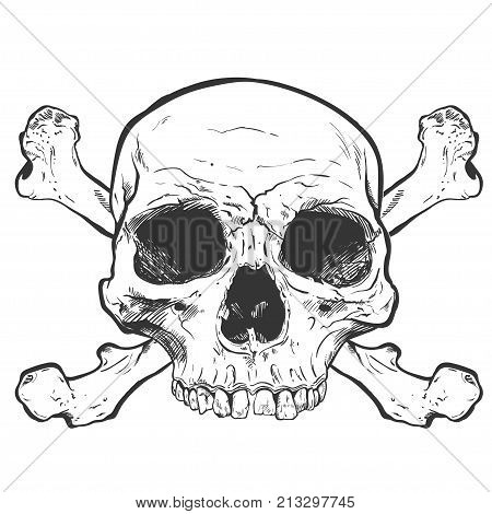 Human Skull Vector Art. Detailed hand drawn illustration of skull on background. Tattoo style skull art. Grunge weathered illustration. Print design.