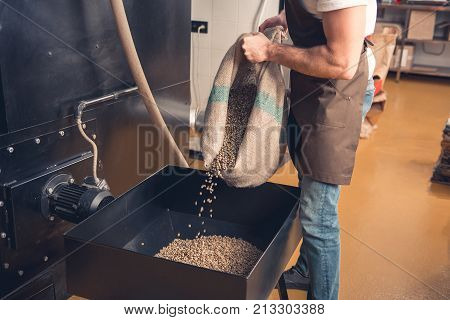 Man strewing green grains from burlap sack in special container. Industry concept. Close up