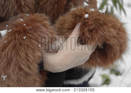 Woman covering her freezing hands in fur jacket sleeves particular focus closeup poster