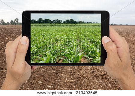 smart agriculture with augmented reality technology futuristic concept man holding tablet on the farm and use technology to predict the future agriculture growth poster