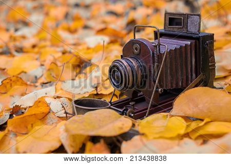 Camera obscura is located in the yellow pages. Autumn conjures up the thought of old age.