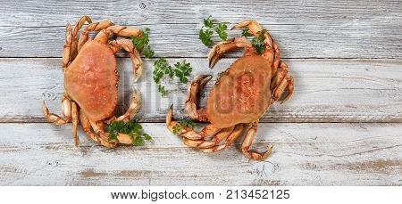Two freshly cooked Dungeness crabs on rustic white wooden boards