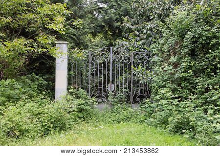 Ornamental Gates Surrounded By Nature And Wild Flowers, Forgotten Place Concept