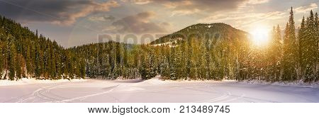 Snowy Meadow In Winter Spruce Forest At Sunset