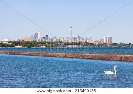 Swan Lake Ontario And Toronto Panorama. Toronto Ontario Canada.