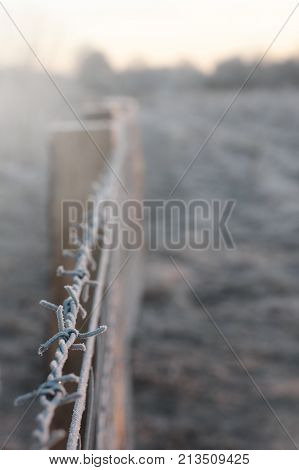 frosted barbwire on top of a fence on a dazzling bright sunny winter morning seperating two sectors - portrait orientation