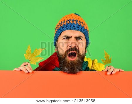 Autumn And Cold Weather Concept. Hipster With Beard