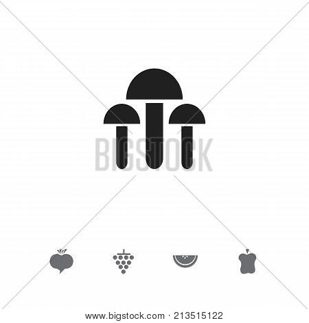 Set Of 5 Editable Berry Icons. Includes Symbols Such As Radish, Bitten, Cantaloupe And More