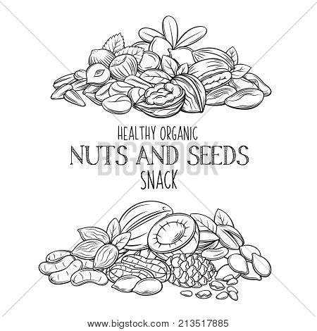 Banners with hand drawn nuts and seeds. Cola nut, pumpkin seed, peanut and sunflower seeds. Pistachio, cashew, coconut, hazelnut and macadamia. Vector illustration in sketch retro style.