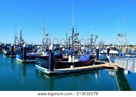 October 12, 2017 in Crescent City, CA:  Fishing vessels docked at the Crescent City, CA Harbor Marina where people can walk up to these vessels and buy fresh caught fish from these boats during weekends