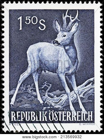 LUGA RUSSIA - AUGUST 20 2017: A stamp printed by AUSTRIA shows European Roe Deer also known as the western roe deer circa 1959