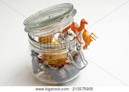 Wild Zoo Animals Escaping Captivity Concept Of Safari Animals In A Jar