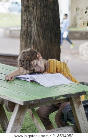 The schoolboy fell asleep on a workbook with his homework on the desk in the park