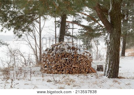 A pile of firewood for the fireplace. Preparation of firewood for the winter. Firewood stacked in a woodpile in the forest by the lake. The winter Blizzard. A neat pile of firewood.