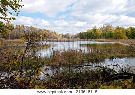 landscape of marshes and forests within minnesota valley national wildlife refuge in eagan minnesota