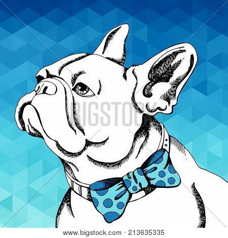 French Bulldog. Vector illustration for a card or poster. Print on clothes. Cute puppy. Pedigree dog.