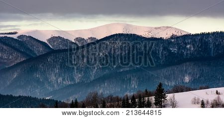 Forested Mountain Ridge With Snowy Tops