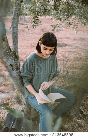Soft focus photo of beautiful female student sitting on tree branch in garden or park and reads book or studies for exams. Tender and femenine woman in warm sweater enjoys outdoors