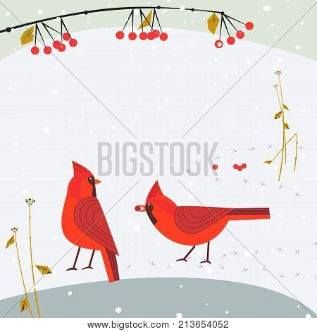 Red Northern Cardinal birds on snow poster. Freehand cartoon cute style. Winter birds of backyard, city garden. Stylized animal sign. New year event banner background. Christmas greeting vector design