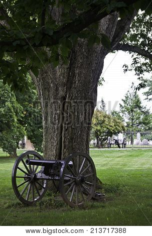 Gettysburg, Pennsylvania - September 9, 2009 - Vertical close up of a Civil War cannon in front of a large old tree in Gettysburg National Cemetery, Pennsylvania on a bright but cloudy late afternoon in September.