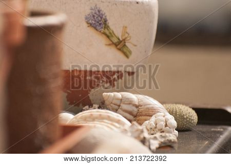 It is image of Decoration from shells