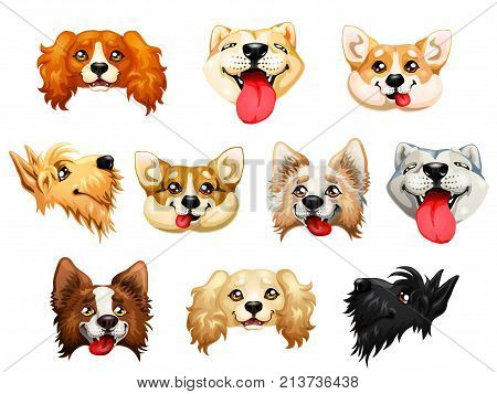 The darling dogs breed Cocker Spaniel, Border Collie, Welsh Corgi, Scottish Terrier, Akita, Inu color red, yellow and other. A cartoon vector illustration isolated on white.