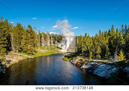 Eruption of Riverside Geyser on Firehole river in Yellowstone National Park, Wyoming, USA