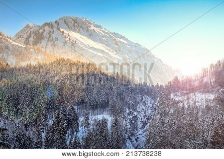 Vibrant sunset in snowy winter mountains and woodland. Allgaeu Alps, Bavaria in Germany.