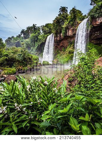Two powerful fairy waterfalls from Iguazu Falls in Argentina. The Andean condors are circling in the sky above the water. The concept of extreme and ecological tourism