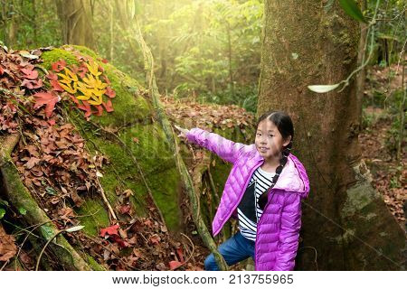 Cute little Asian girl have fun on beautiful autumn day.Happy child enjoy in autumn park. Kid in purple jacket sit near yellow and red maple foliage. Autumn leaf in hearth shape. Autumn activities.