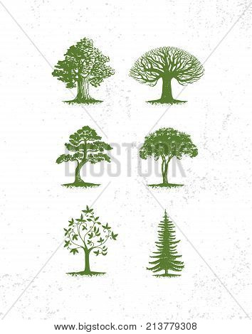 Big collection of tree illustrations, pine trees, evergreen trees, grass and other type of trees.