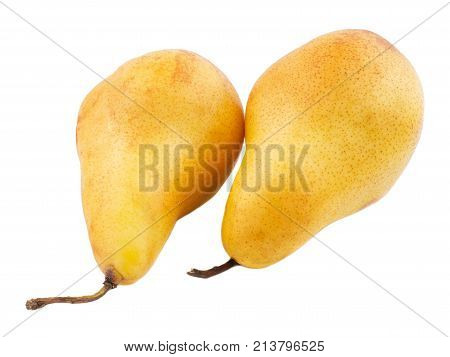 Two pears yellow, useful and ripe turned by tails to the left on a white isolated background