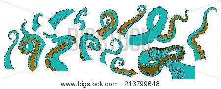 Vector sketch cartoon gradient colored octopus tentacles