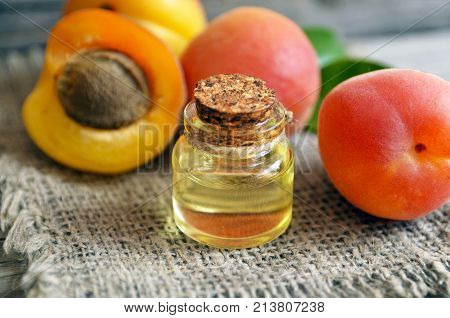 The apricot kernel oi in a glass jar and fresh ripe apricots on old wooden background. Essential apricot oil for spa,beauty treatment, aromatherapy and bodycare. Selective focus.
