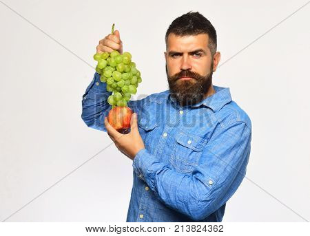 Farmer Shows Harvest. Man With Beard Holds Bunch Of Grapes