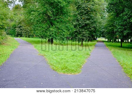 The intersection of pedestrian paths in the Park