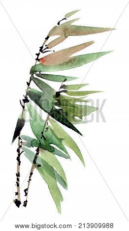 Watercolor and ink illustration of tree branch with leaves in style sumi-e u-sin. Oriental traditional painting.