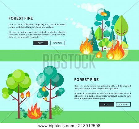 Forest fire set of cartoon posters with inscriptions. Vector illustration of raging wildfire that has engulfed lush trees, bushes and grass