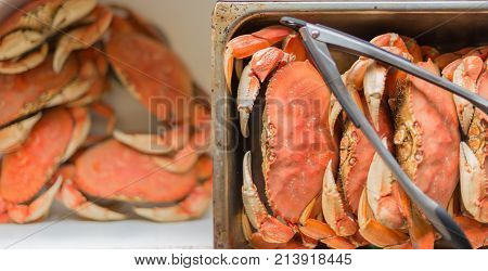 Crustaceans, Dungeness crabs ready for cleaning in the sink and pan
