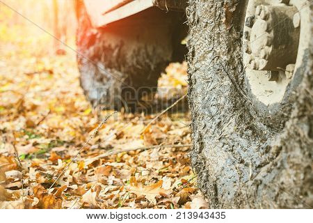 Dirty the wheels of the car after off-road. The car is in the autumn forest, fallen leaves. Selective focus