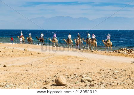 Dahab Egypt 24.10. 2017: Caravan of camels with tourists and cameleer in the Sinai desert on the shore of the Red Sea. Concept of adventure tourism and active lifestyle