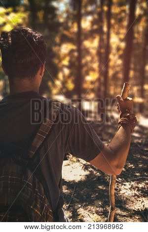 Hiker observing beauty of the forest in summertime. Man and indian summer. Man traveler looking in forest. Young man with backpack and stick and kerchief looking far away. Colorful forest and wanderer